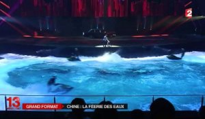 Un spectacle aquatique exceptionnel en Chine