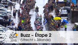 Buzz du jour / Buzz of the day - Bordures sous la pluie - Étape 2 (Utrecht > Zélande) - Tour de France 2015