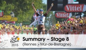 Summary - Stage 8 (Rennes > Mûr-de-Bretagne) - Tour de France 2015
