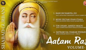 Various - Aatam Ras Volume 2 - Latest Shabad Gurbani 2017