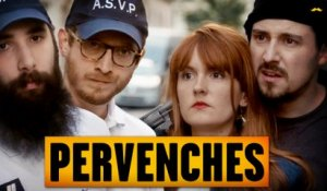 Pervenches ( Multiprise )