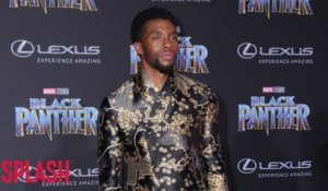 Black Panther set to become one of the highest grossing blockbusters in history