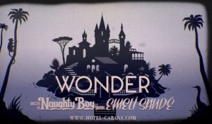 Naughty Boy - Wonder