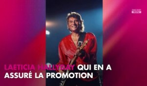 Johnny Hallyday : disque de diamant, son album posthume bat un nouveau record