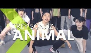 Trey Songz - Animal / LIGI Choreography.