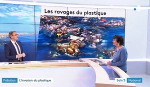Pollution : l'invasion dramatique du plastique