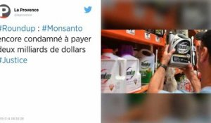 Roundup : Monsanto condamné à verser 2 milliards de dollars à un couple atteint d'un cancer