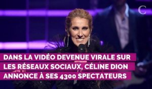 VIDEO. Céline Dion interrompt son concert... pour un fan victime d'une envie pressante !