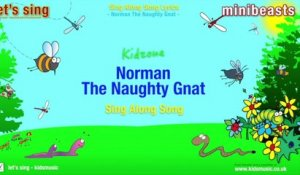 Kidzone - Norman The Naughty Gnat