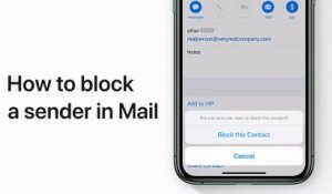How to block a sender in Mail in iOS 13 on your iPhone, iPad, or iPod touch – Apple Support