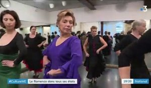 Danse : le flamenco fait son show à Paris