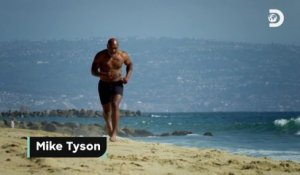 Le documentaire « Mike Tyson vs Shark » sera diffusé le 21 août à 22h25 en France (le 9 août à 21h aux Etats-Unis) sur Discovery Channel