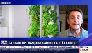 La start up française Gardyn face à la crise - 18/08