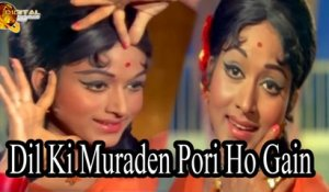 Dil Ki Muraden Pori Ho Gain | Love Song | HD Video