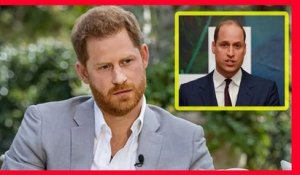 Les princes Harry et William se réuniront : Excellente nouvelle