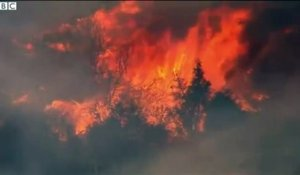 De violents incendies ravagent la Californie