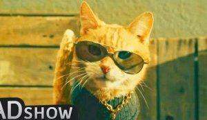 Meet the coolest cat in town!