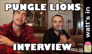 Pungle Lions : Oh The Light  Interview Exclu