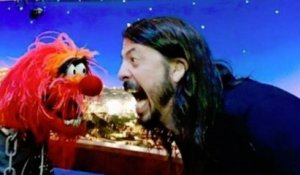 Foo Fighters  Dave Grohl vs The Muppets  Animal