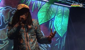 ALPHA BLONDY live @ Main Stage 2014