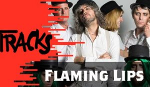 The Flaming Lips - Tracks ARTE