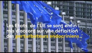L'Europe s'accorde sur les perturbateurs endocriniens