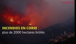 Incendies en Corse : plus de 2000 hectares brûlés