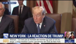"Trump qualifie d'""animal"" l'auteur de l'attentat de New York"