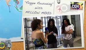 "D24TV: ""Reggae Reasoning"" con MELLOW MOOD"