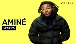 "Aminé ""DR. WHOEVER"" Official Lyrics & Meaning 