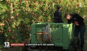 Feuilleton : le champ des agricultrices (2/5)