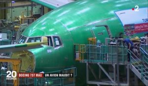 Boeing 737 Max : un avion maudit ?