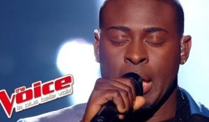 Queen - We Are The Champions | Wesley | The Voice France 2014 | Demi-Finale