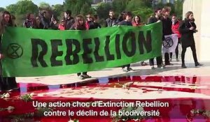 "Action ""coup de poing"" d'Extinction Rebellion au Trocadéro"