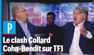 « Ordure ! » : Gilbert Collard et Daniel Cohn-Bendit s'insultent en direct sur TF1