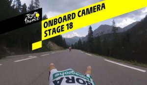 Onboard camera Emotions - Étape 18 / Stage 18 - Tour de France 2019