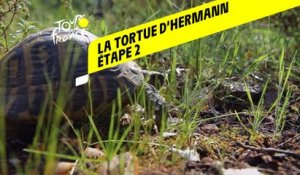 Tour de France 2020 : Étape 2 - La tortue d'Hermann