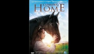 COMING HOME (2011) FRENCH 720p Regarder