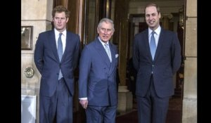 ✅  Charles, William ou Harry : qui est le plus populaire ?