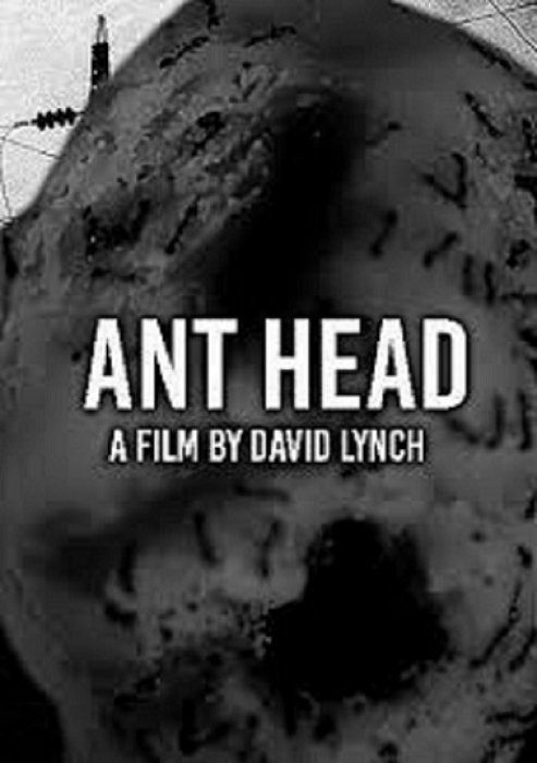 Ant Head : Affiche