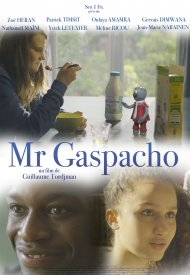 Affiche de Mr Gaspacho