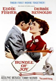 Affiche de Bundle of Joy