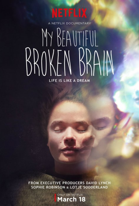 My Beautiful Broken Brain : Affiche