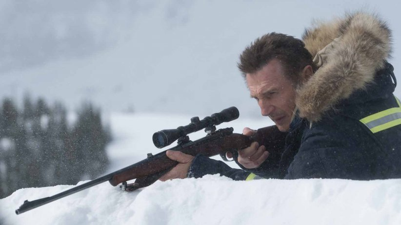 Sang froid : Photo Liam Neeson