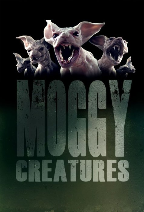 Moggy Creatures : Affiche