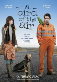 Affiche de A Bird of the Air