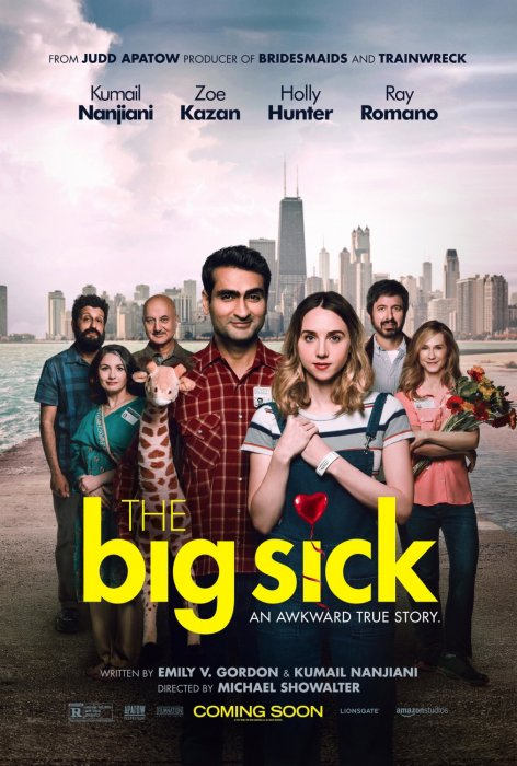 The Big Sick : Affiche