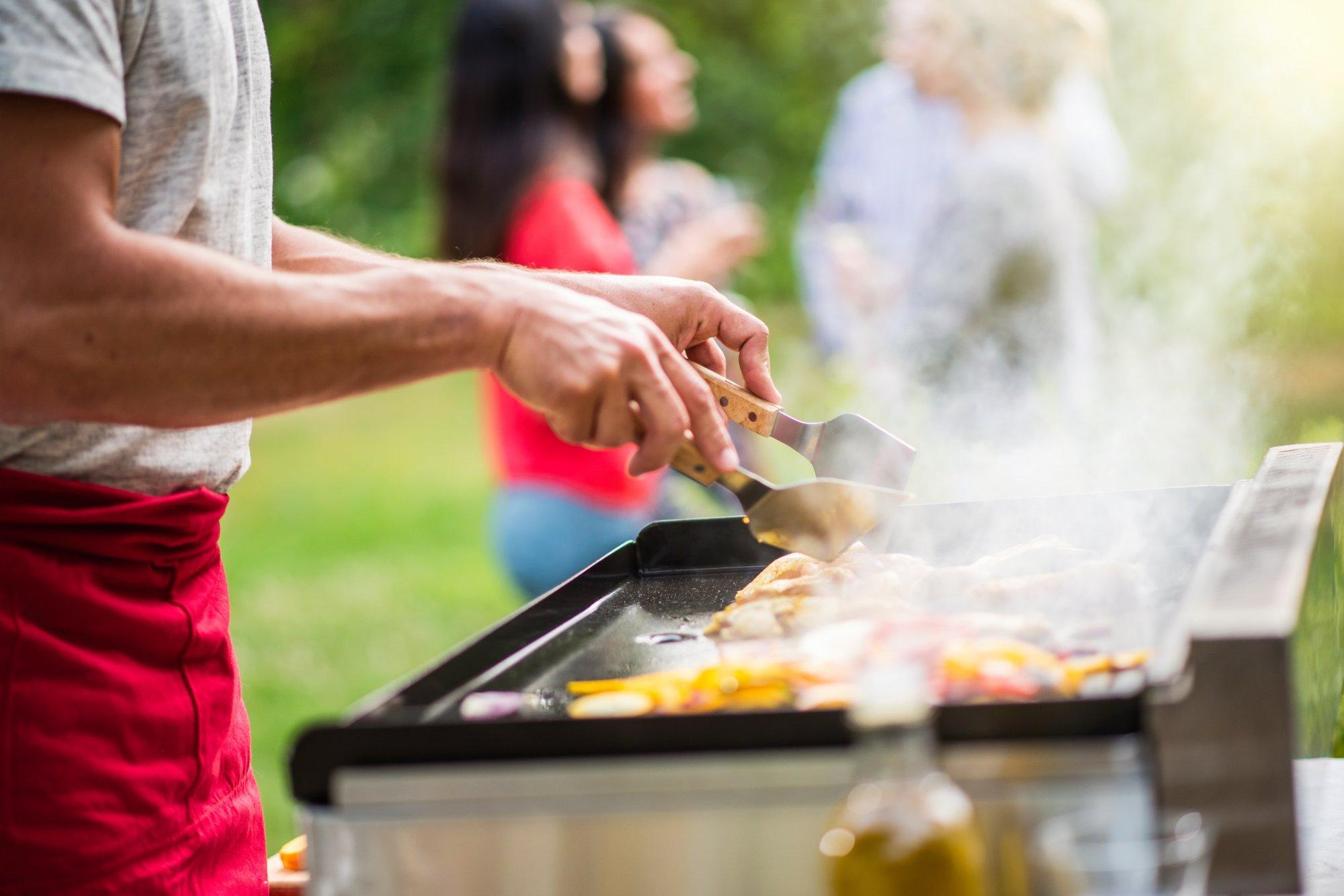 Barbecue Ou Plancha Que Choisir barbecue vs plancha : comment choisir ?