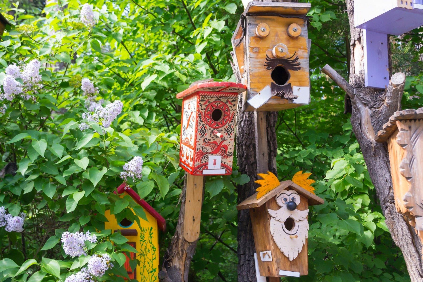 Faire Une Palissade Avec Des Branches jardin : 5 diy à faire avec des enfants
